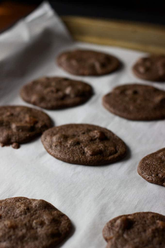Double Chocolate Apricot Cookies - made with healthy teff flour and naturally gluten-free! | saltedplains.com