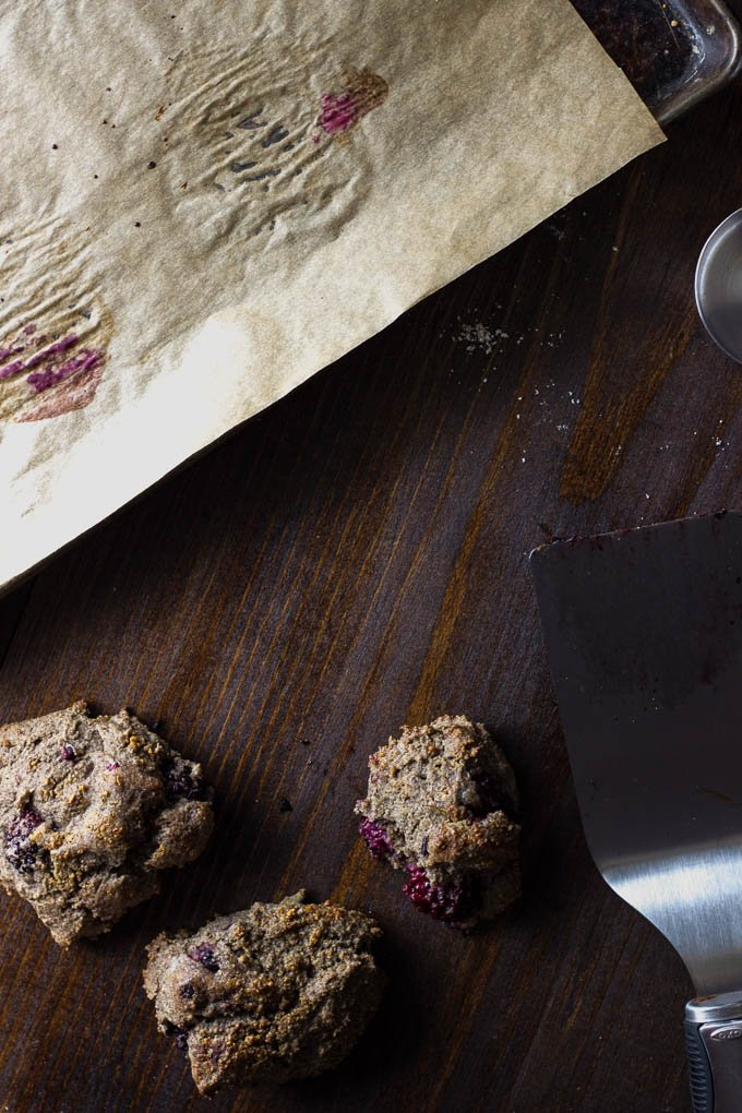 Blackberry Buckwheat Cream Scones (gf+v) | saltedplains.com