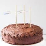 A chocolate lovers cake! Gluten-free + refined sugar-free | saltedplains.com