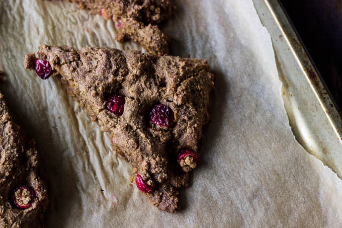 Gluten-free + Vegan Gingerbread Scones with Cranberries | saltedplains.com