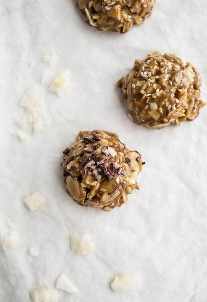 No Bake Honey Almond Bites (gluten-free) | saltedplains.com