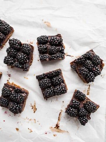Blackberry Cashew Bars (gluten-free, vegan, refined sugar-free) saltedplains.com