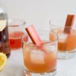 Rhubarb Bourbon Sour | saltedplains.com
