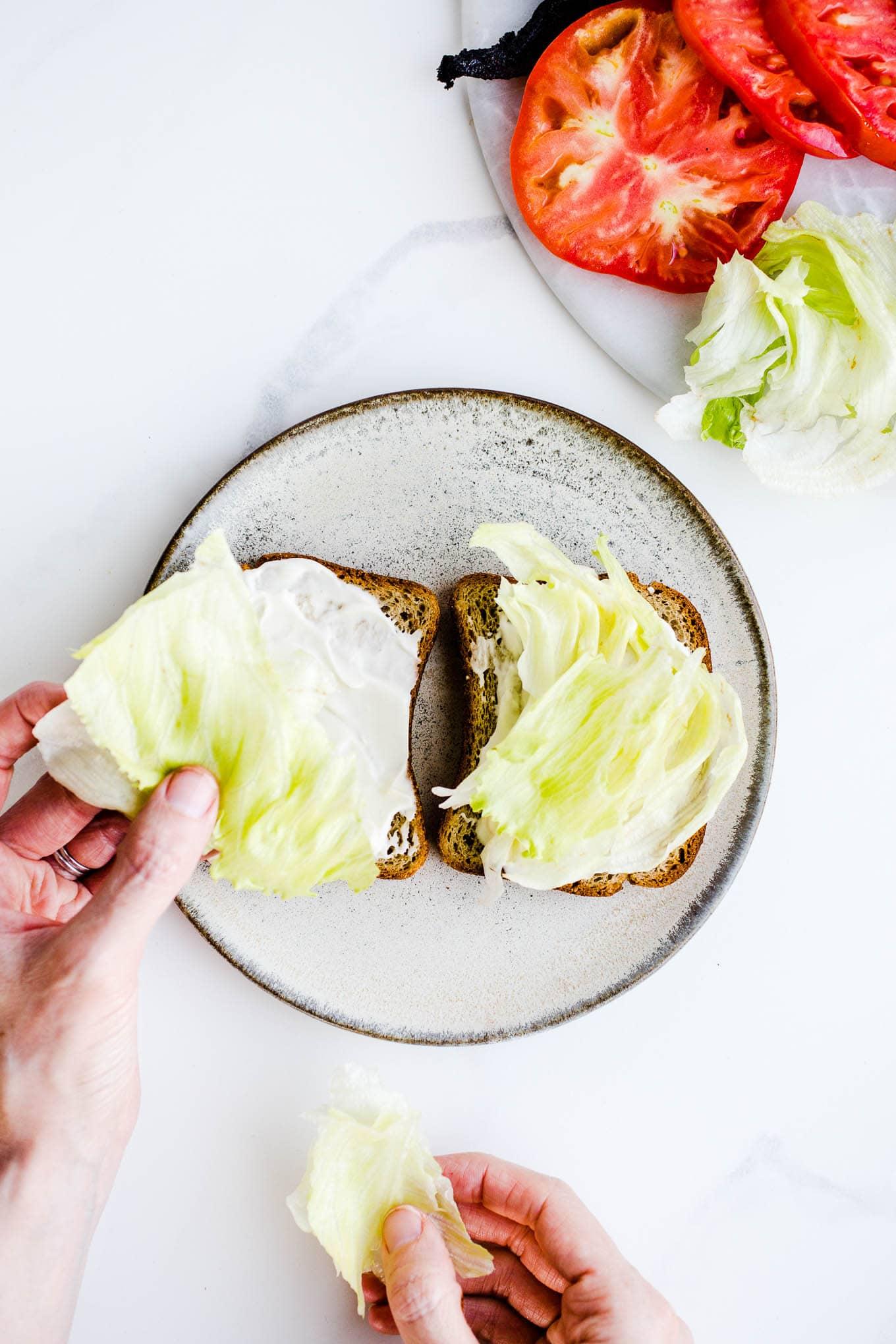 iceberg lettuces on slices of bread